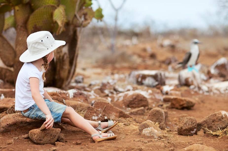 Devido à diversidade de espécies vegetais e animais, Galápagos é uma grande diversão para as crianças