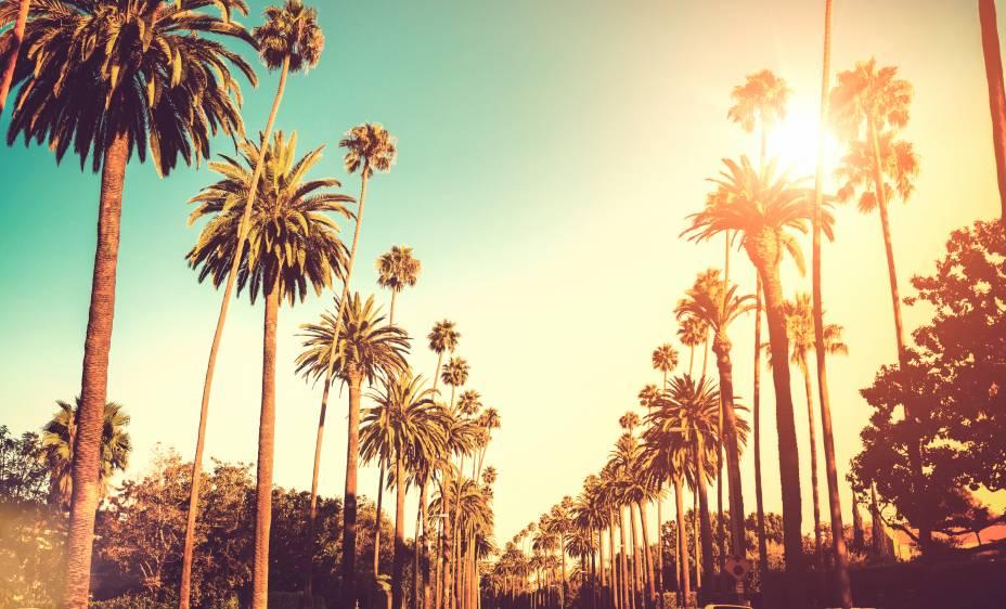 As palmeiras icônicas de Sunset Boulevard, a rota icônica de Los Angeles