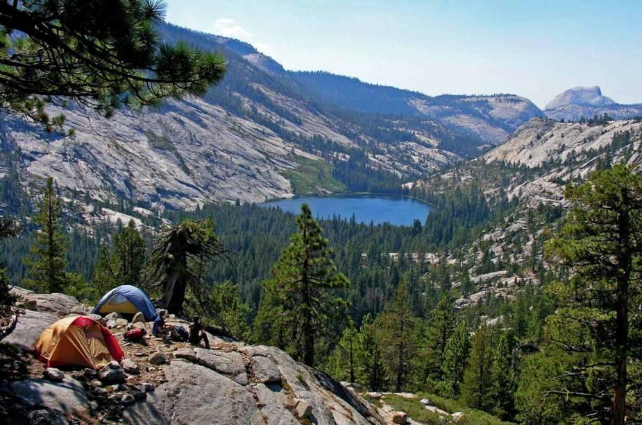 Yosemite National Park Camp