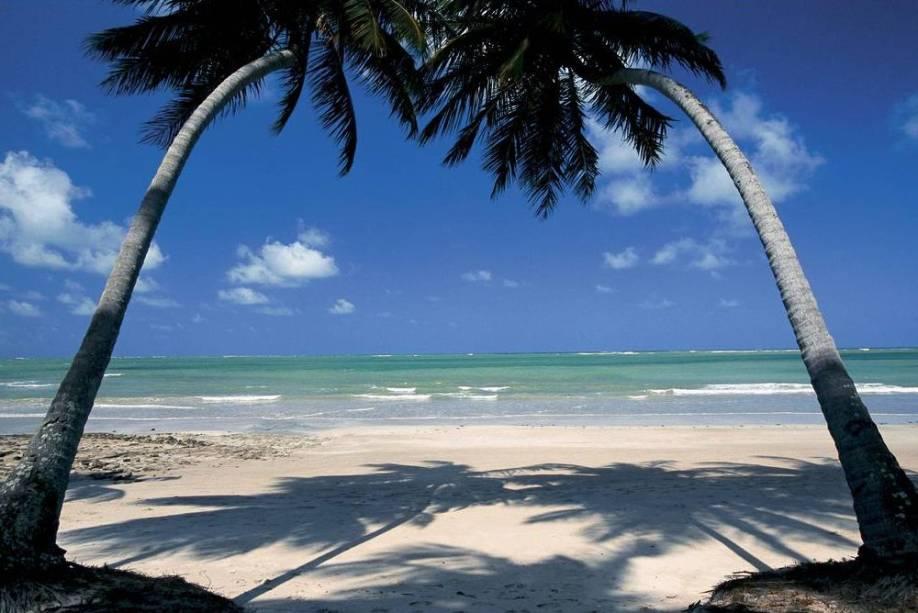 A Praia dos Carneiros reúne todas as características de uma praia paradisíaca: coqueiros, areias claras e mar verde e transparente