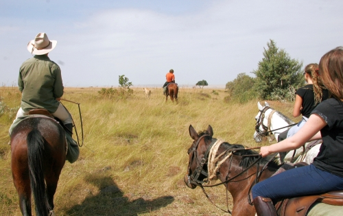 HorsesAroundTheMasaïMara3