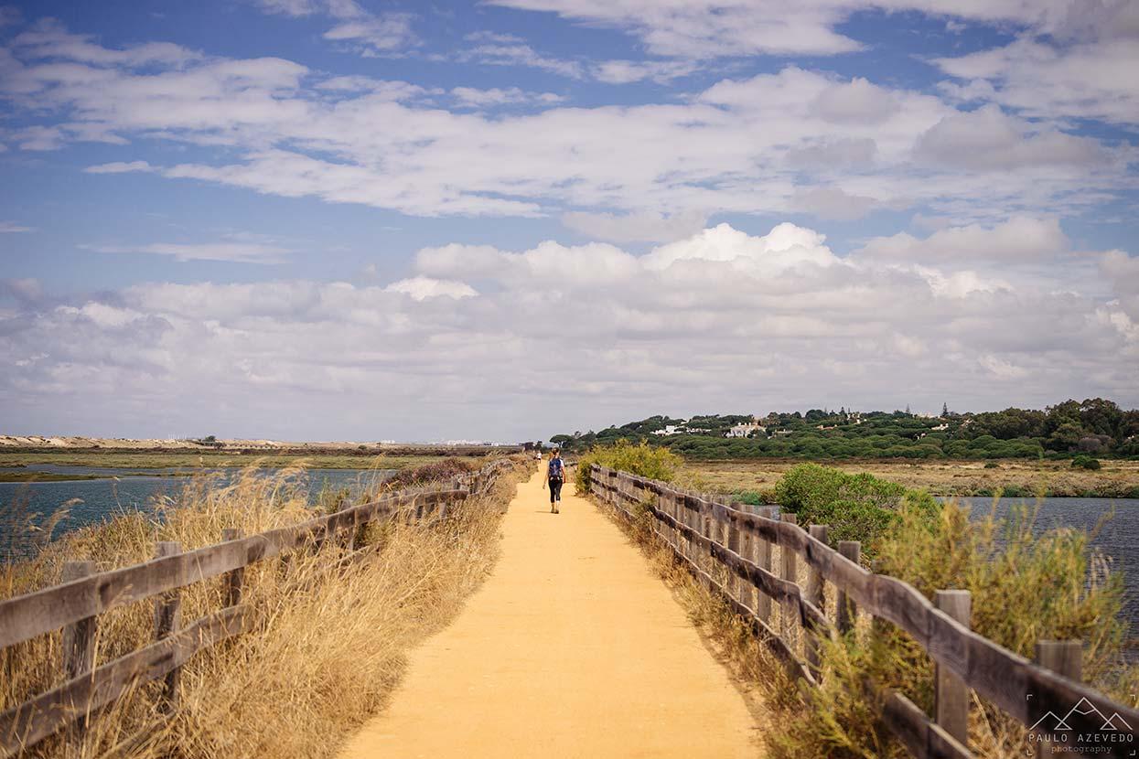 passeios costeiros loulé, ria formosa