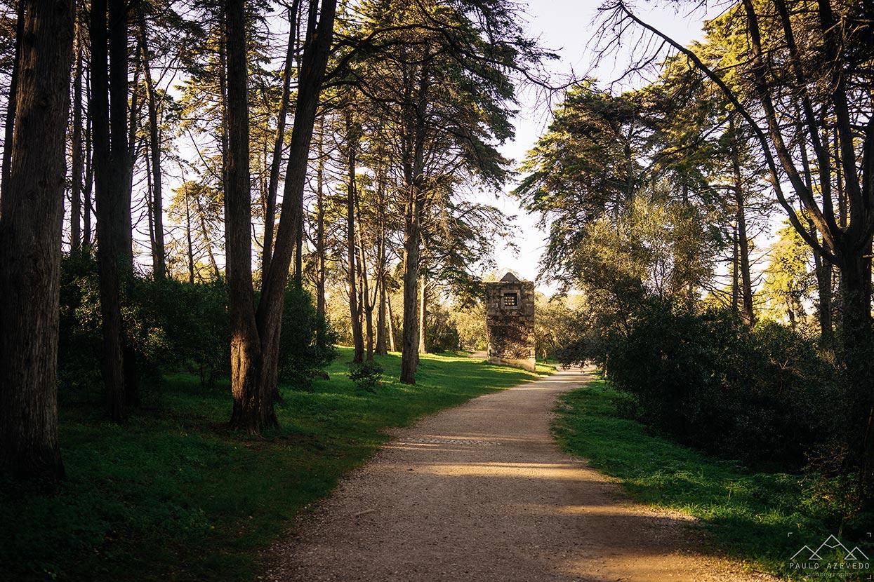 Percurso do Curso de Água, Parque Florestal de Monsanto, Lisboa