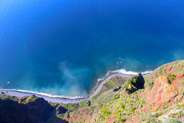 Cabo Girão - floresta